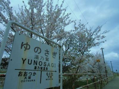 f:id:kabutoyama-tigers:20140430133049j:image