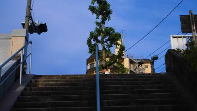 f:id:kabutoyama-tigers:20140526204950j:image