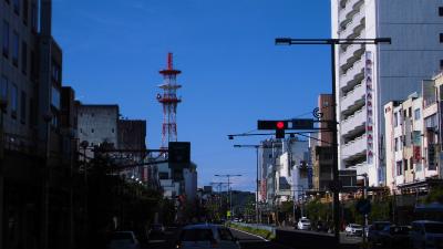 f:id:kabutoyama-tigers:20140605131410j:image