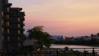 f:id:kabutoyama-tigers:20140606132131j:image