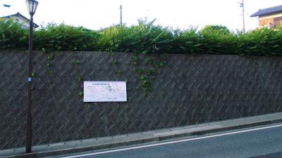 f:id:kabutoyama-tigers:20140617184037j:image