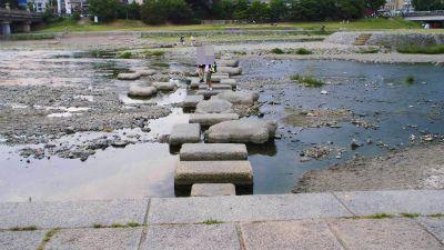 f:id:kabutoyama-tigers:20140622180244j:image