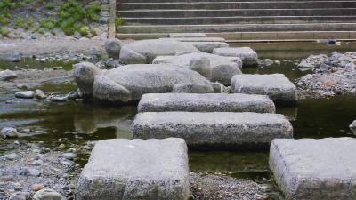 f:id:kabutoyama-tigers:20140622182846j:image
