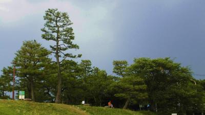 f:id:kabutoyama-tigers:20140622183411j:image