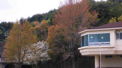 f:id:kabutoyama-tigers:20140701171543j:image