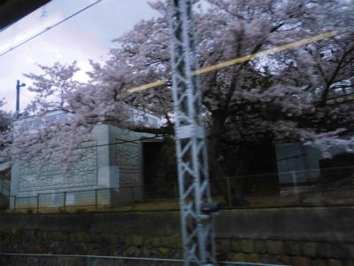 f:id:kabutoyama-tigers:20140702195103j:image