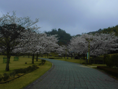 f:id:kabutoyama-tigers:20140706182643j:image