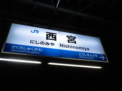 f:id:kabutoyama-tigers:20140706185413j:image