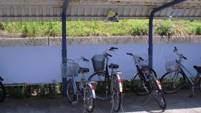 f:id:kabutoyama-tigers:20140713161837j:image