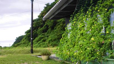 f:id:kabutoyama-tigers:20140713165807j:image