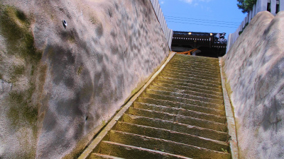 f:id:kabutoyama-tigers:20140713175455j:image