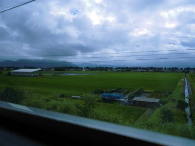 f:id:kabutoyama-tigers:20140713181350j:image