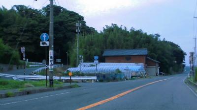 f:id:kabutoyama-tigers:20140721191605j:image