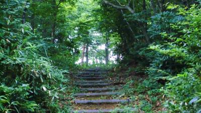 f:id:kabutoyama-tigers:20140728054846j:image