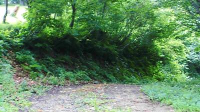 f:id:kabutoyama-tigers:20140729122033j:image
