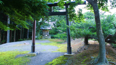 f:id:kabutoyama-tigers:20140729132655j:image