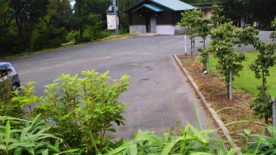 f:id:kabutoyama-tigers:20140729202133j:image