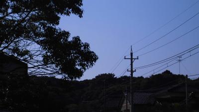 f:id:kabutoyama-tigers:20140803181213j:image