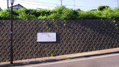 f:id:kabutoyama-tigers:20140803211257j:image