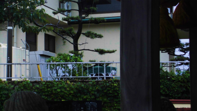 f:id:kabutoyama-tigers:20140817095723j:image
