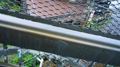 f:id:kabutoyama-tigers:20140817110155j:image