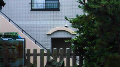 f:id:kabutoyama-tigers:20140817114534j:image
