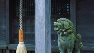 f:id:kabutoyama-tigers:20140817115629j:image
