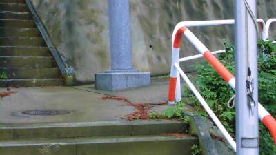 f:id:kabutoyama-tigers:20140817121408j:image