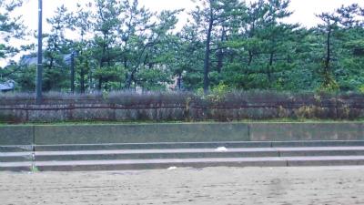 f:id:kabutoyama-tigers:20140818124214j:image
