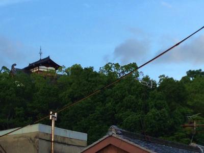 f:id:kabutoyama-tigers:20140902134850j:image