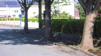 f:id:kabutoyama-tigers:20140907174719j:image