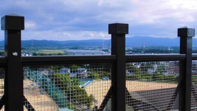f:id:kabutoyama-tigers:20140909201059j:image