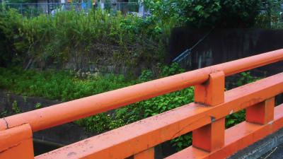 f:id:kabutoyama-tigers:20140917171524j:image
