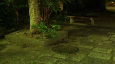 f:id:kabutoyama-tigers:20140921083620j:image