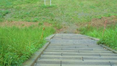 f:id:kabutoyama-tigers:20141226070928j:image