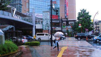 f:id:kabutoyama-tigers:20141226080021j:image