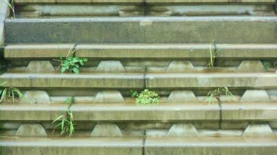 f:id:kabutoyama-tigers:20141226095146j:image