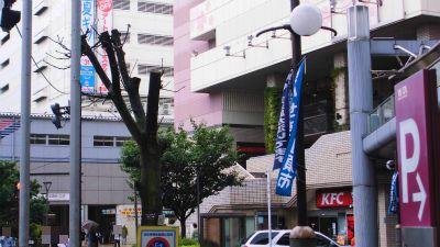 f:id:kabutoyama-tigers:20141226103558j:image