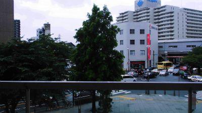 f:id:kabutoyama-tigers:20141226105241j:image