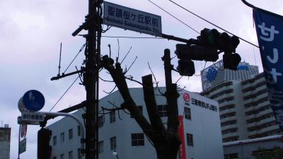 f:id:kabutoyama-tigers:20141227011603j:image