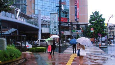 f:id:kabutoyama-tigers:20141227031152j:image