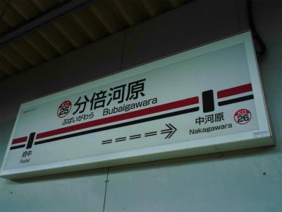 f:id:kabutoyama-tigers:20141227052630j:image