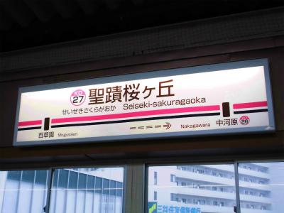 f:id:kabutoyama-tigers:20141227053557j:image