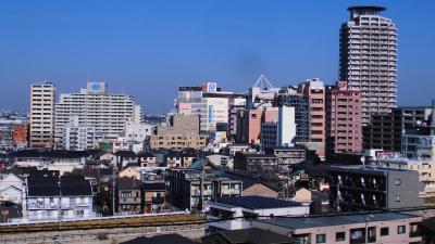 f:id:kabutoyama-tigers:20150104100136j:image