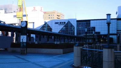 f:id:kabutoyama-tigers:20150104102407j:image