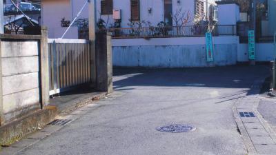 f:id:kabutoyama-tigers:20150104105220j:image