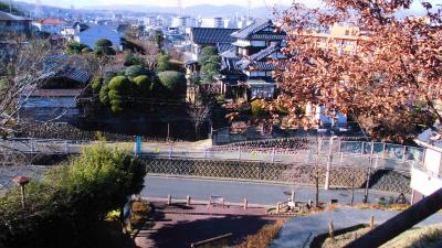 f:id:kabutoyama-tigers:20150104105950j:image