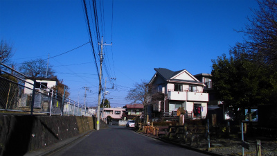 f:id:kabutoyama-tigers:20150104110241j:image