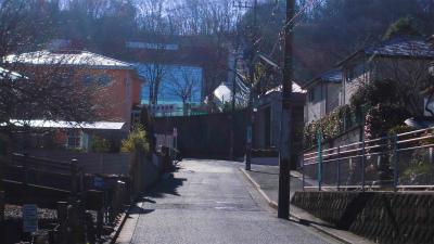 f:id:kabutoyama-tigers:20150104111041j:image