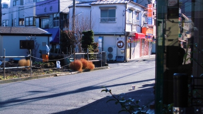 f:id:kabutoyama-tigers:20150104124134j:image